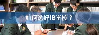 如何选好IB学校?