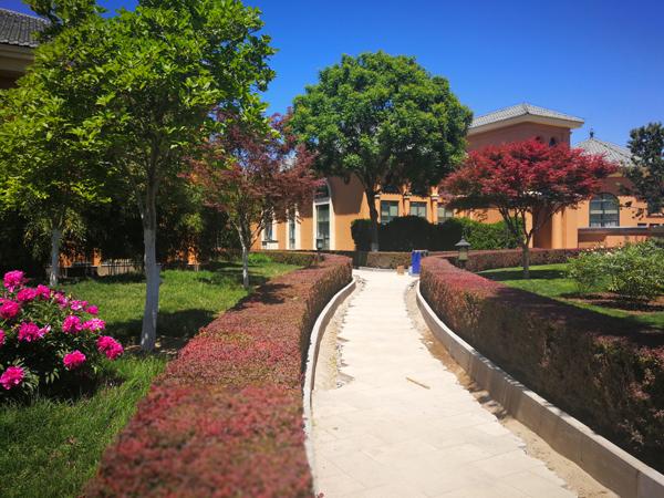 校园一角2.jpg