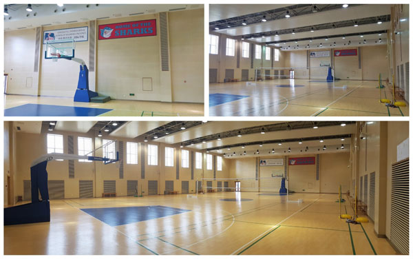 gymnasium_collage.jpg