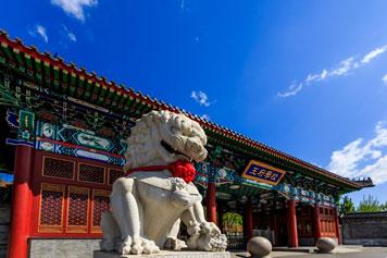 北京王府�W校